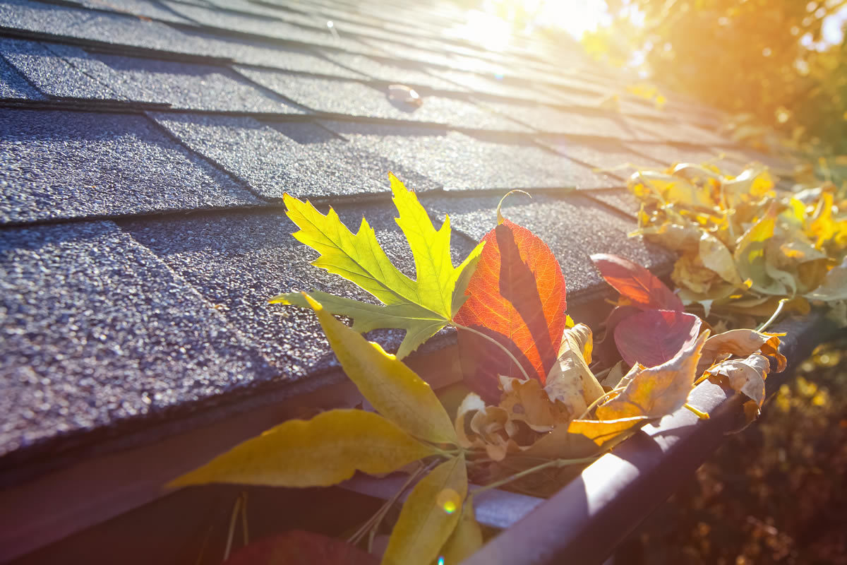 Find a Roofing Contractor in West Bloomfield Michigan