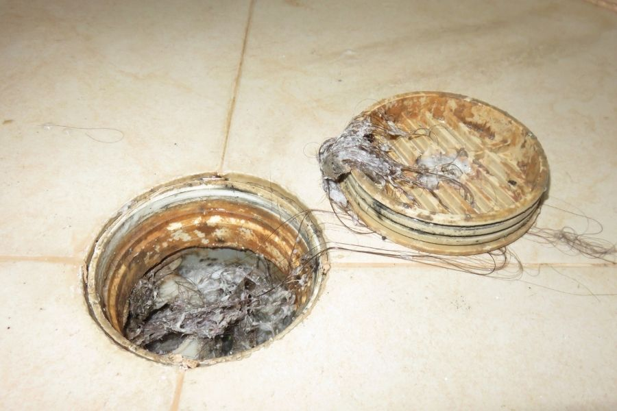 Signs You May Have Problems with Your Sewer Line in Downriver Michigan